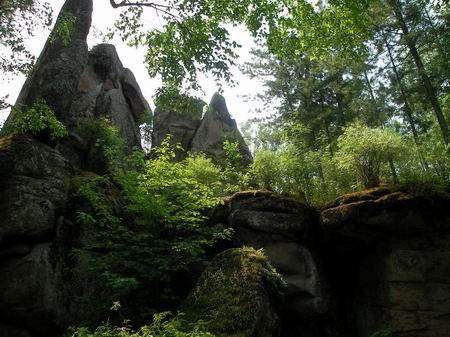 汤旺河林海奇石风景区图片
