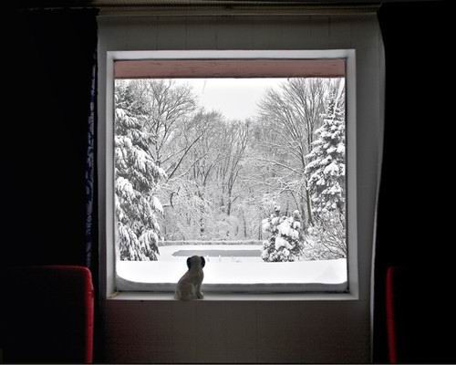 图片 窗外